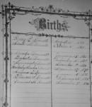 Henry Bennett Bible, Births