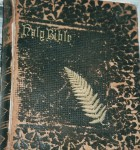 Henry B. Bennett Bible, photographed 1999